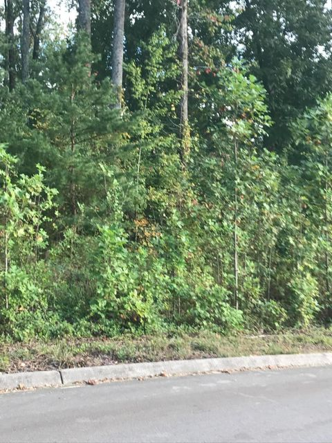 Additional photo for property listing at 3349 Colby Cove Drive 3349 Colby Cove Drive Maryville, Tennessee 37801 Estados Unidos