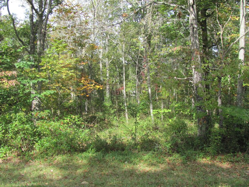 Land for Sale at 167 Lakeshire Drive 167 Lakeshire Drive Fairfield Glade, Tennessee 38558 United States