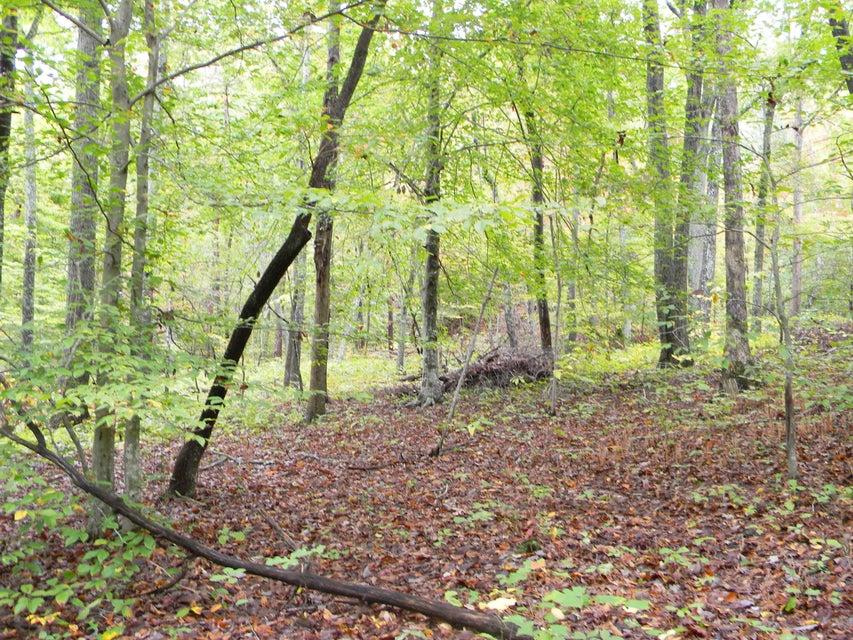 Terrain pour l Vente à 255 & 256 Big Ridge Point 255 & 256 Big Ridge Point Sharps Chapel, Tennessee 37866 États-Unis