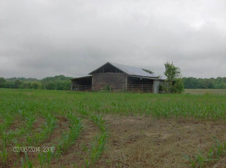 土地 为 销售 在 Co Rd 781 Co Rd 781 Riceville, 田纳西州 37370 美国