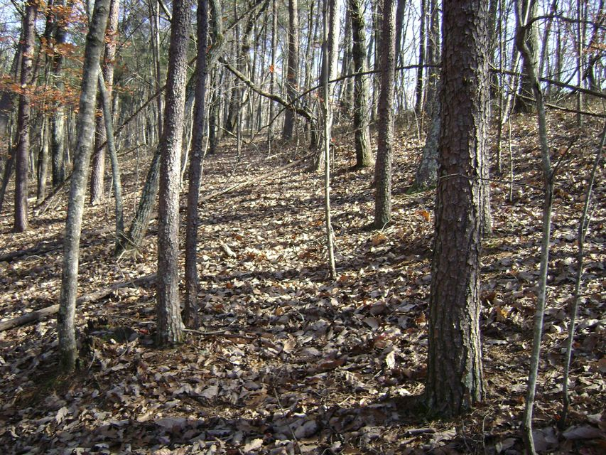 Additional photo for property listing at Back Valley Road Back Valley Road Dayton, Tennessee 37321 Estados Unidos
