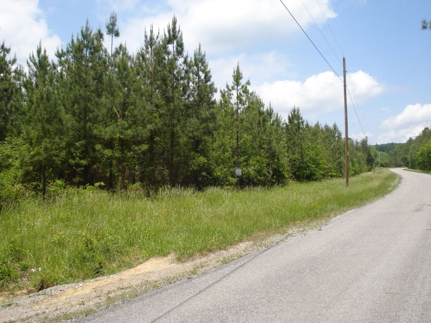 Additional photo for property listing at Newton Lane Newton Lane Crossville, Tennessee 38572 États-Unis