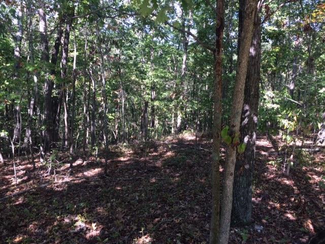 Земля для того Продажа на 2291 Old Dogwood Tr 2291 Old Dogwood Tr Loudon, Теннесси 37774 Соединенные Штаты