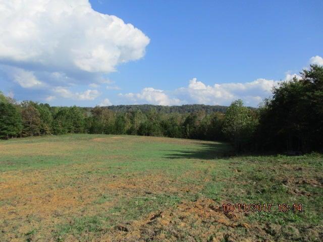 土地 为 销售 在 1275 County Road 130 1275 County Road 130 Riceville, 田纳西州 37370 美国