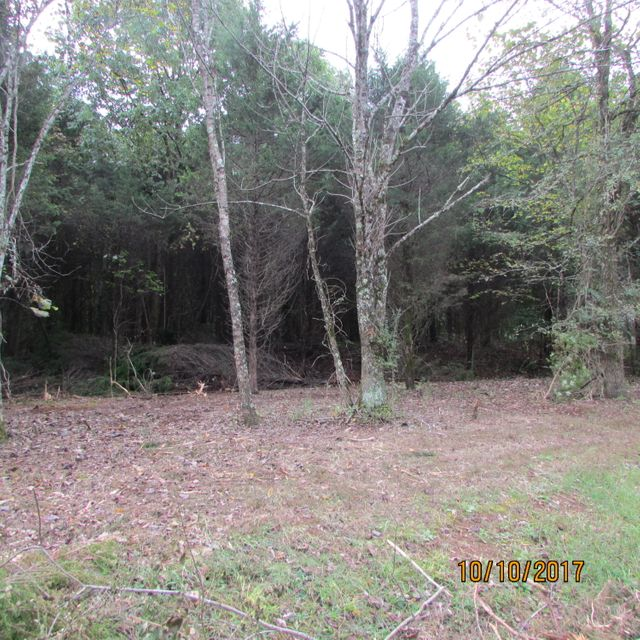 Additional photo for property listing at 119 Dudala Way 119 Dudala Way Loudon, Tennessee 37774 États-Unis
