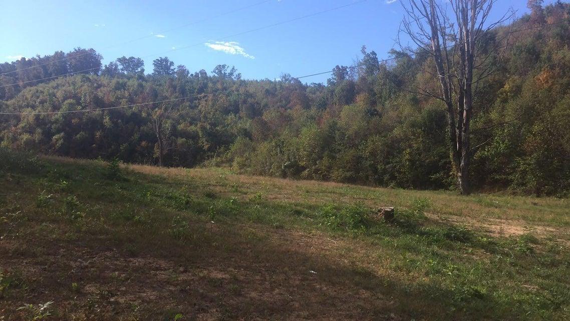 Terrain pour l Vente à Hodgetown Road Hodgetown Road Rutledge, Tennessee 37861 États-Unis