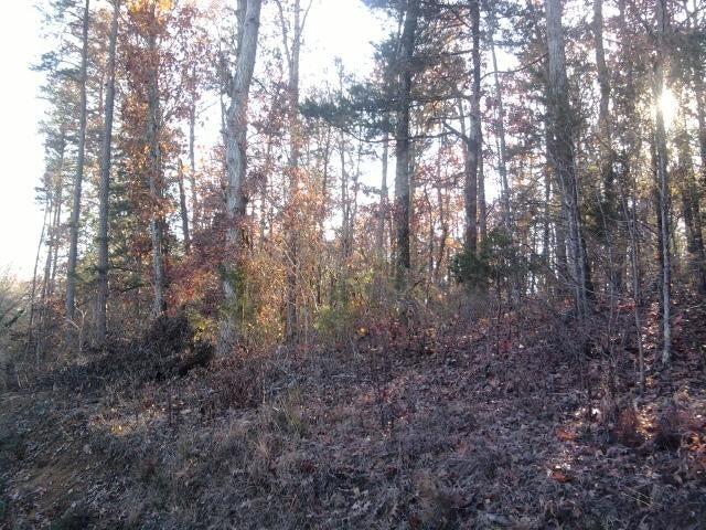 Terrain pour l Vente à Hwy 72 / Clear Branch Road Hwy 72 / Clear Branch Road Loudon, Tennessee 37774 États-Unis
