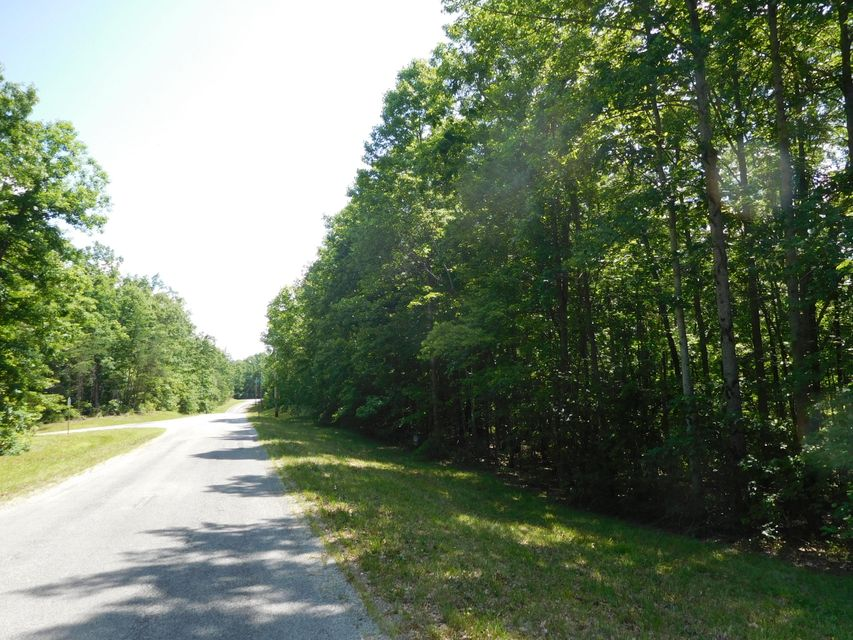 Land for Sale at Sawmill Road Road Sawmill Road Road Monterey, Tennessee 38574 United States