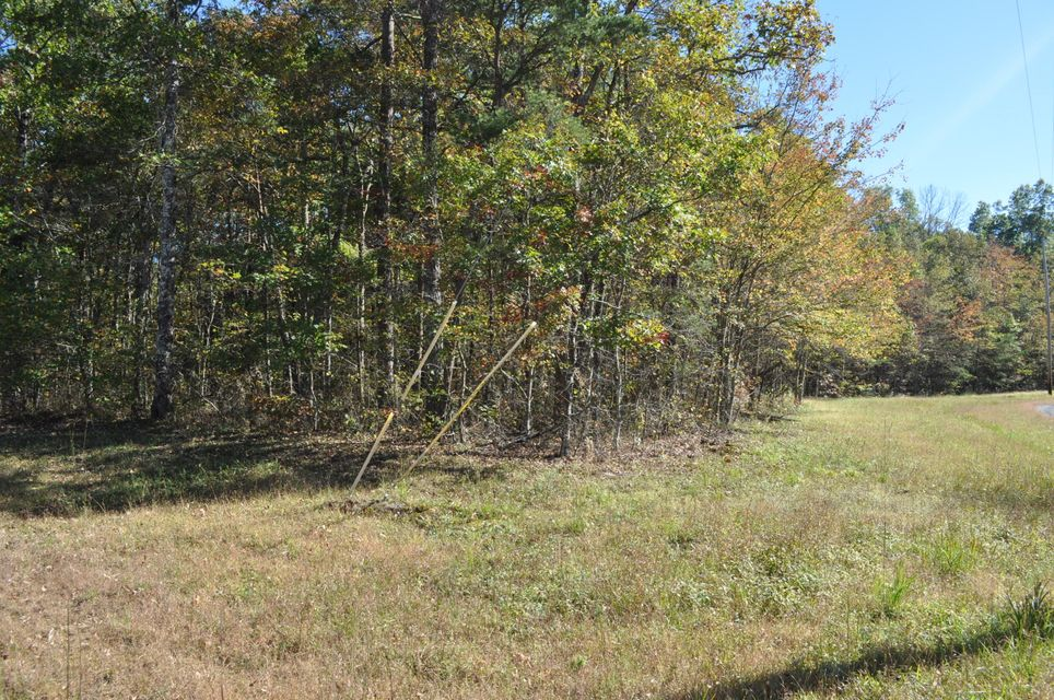 Additional photo for property listing at Cumberland Lakes Drive Cumberland Lakes Drive Monterey, Tennessee 38574 Estados Unidos