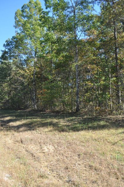 Additional photo for property listing at Cumberland Lakes Drive Cumberland Lakes Drive Monterey, Tennessee 38574 États-Unis