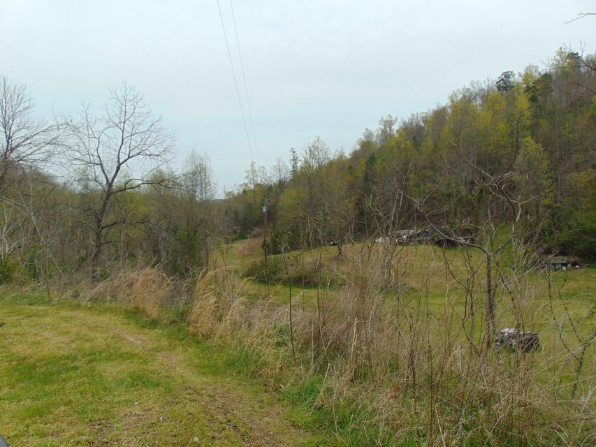 Land for Sale at 172 Muriel Lane 172 Muriel Lane Jacksboro, Tennessee 37757 United States