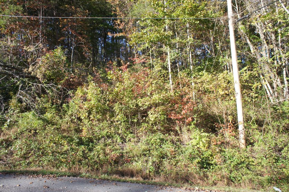 Land for Sale at Lot 20 Bakers Circle Lot 20 Bakers Circle Maynardville, Tennessee 37807 United States