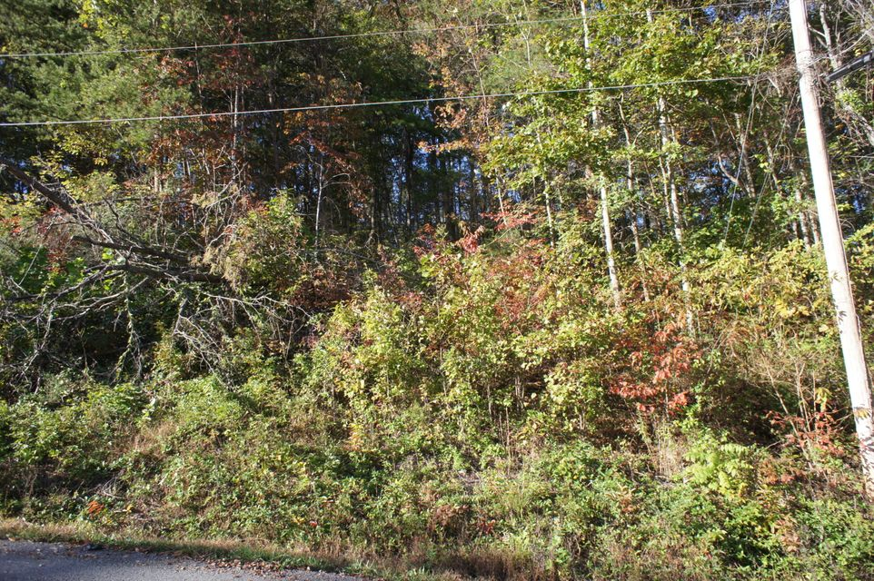 Additional photo for property listing at Lot 20 Bakers Circle Lot 20 Bakers Circle Maynardville, Tennessee 37807 United States