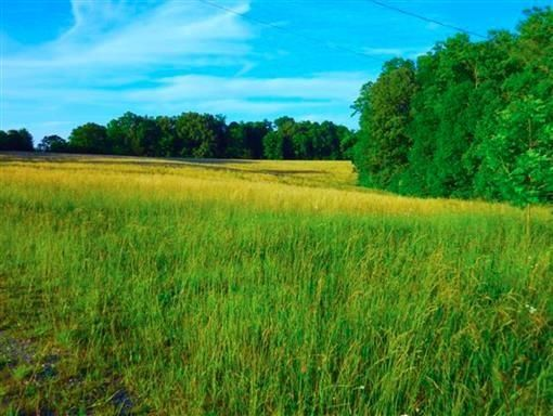 土地 为 销售 在 Johnson Chapel Road Johnson Chapel Road Sparta, 田纳西州 38583 美国