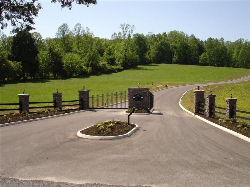 Additional photo for property listing at Dogwood Cove Lot 4 Dogwood Cove Lot 4 Spring City, Теннесси 37381 Соединенные Штаты