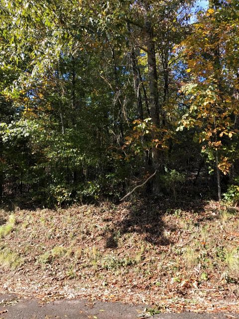 Additional photo for property listing at 316 Ootsima Lane 316 Ootsima Lane Loudon, Tennessee 37774 United States