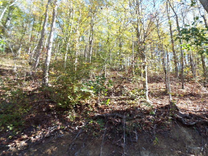 Additional photo for property listing at Sugar Loaf Road Sugar Loaf Road Sevierville, Tennessee 37862 United States