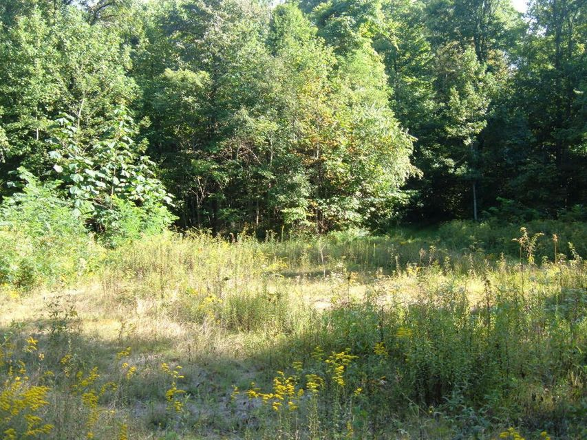 Land for Sale at Low Gap Road Low Gap Road Helenwood, Tennessee 37755 United States