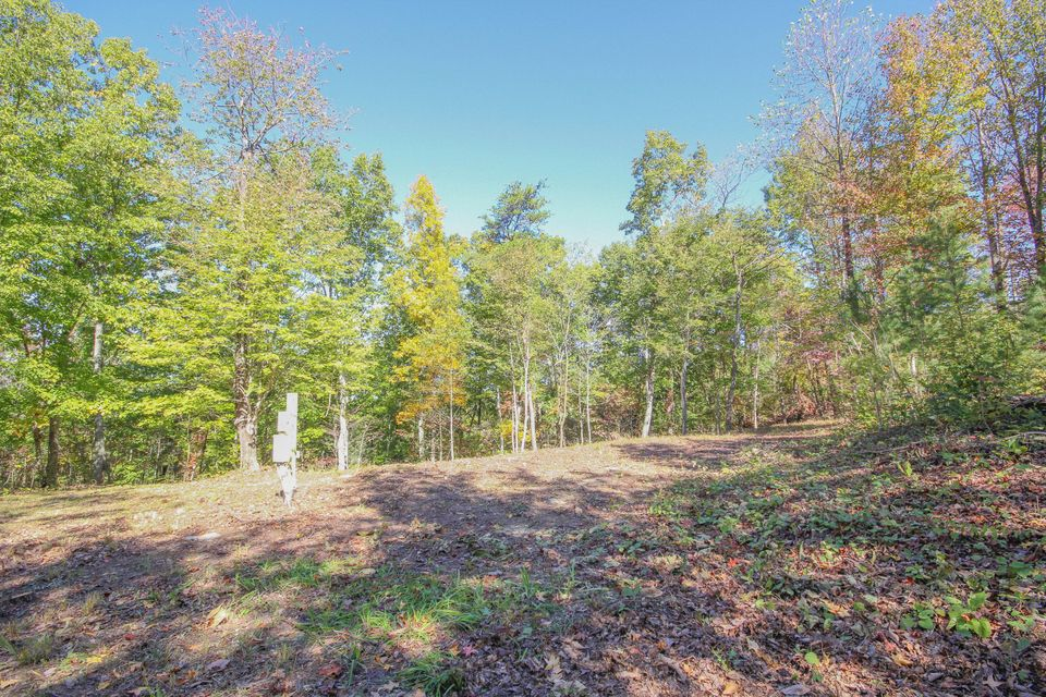 Additional photo for property listing at 3755 Chilly Springs Road 3755 Chilly Springs Road Maryville, Tennessee 37803 États-Unis