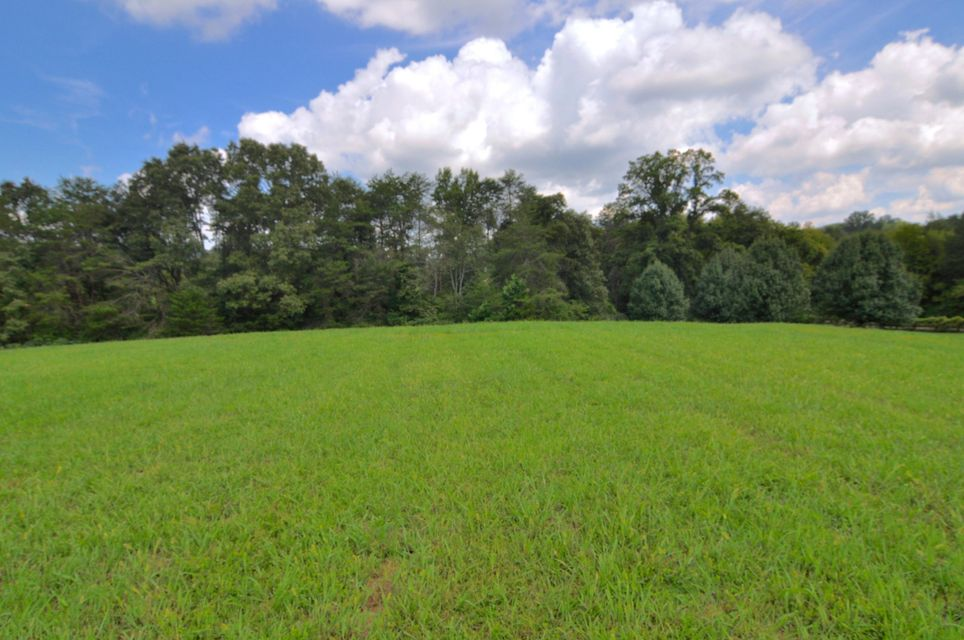 Additional photo for property listing at 817 Marble Hill Road 817 Marble Hill Road Friendsville, 田纳西州 37737 美国