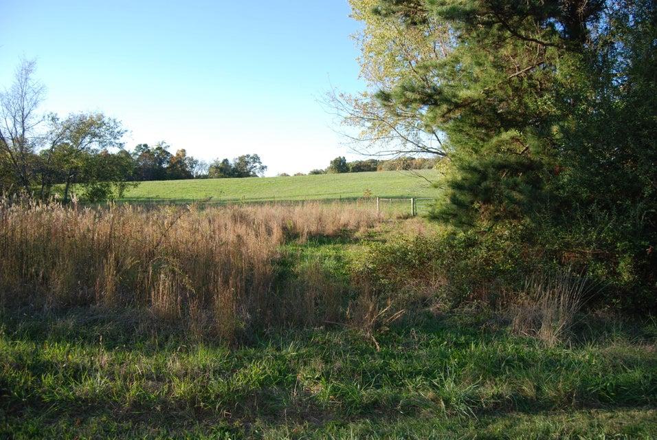 Земля для того Продажа на 253 Chogi Lane 253 Chogi Lane Loudon, Теннесси 37774 Соединенные Штаты