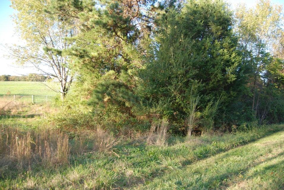 Additional photo for property listing at 253 Chogi Lane 253 Chogi Lane Loudon, Теннесси 37774 Соединенные Штаты
