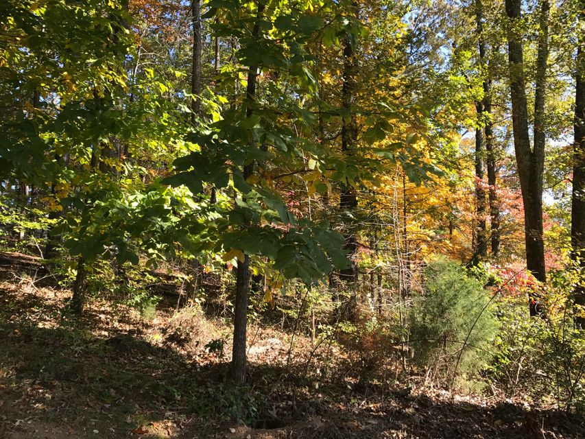 土地,用地 为 销售 在 Nebo Mountain Road Nebo Mountain Road Walland, 田纳西州 37886 美国