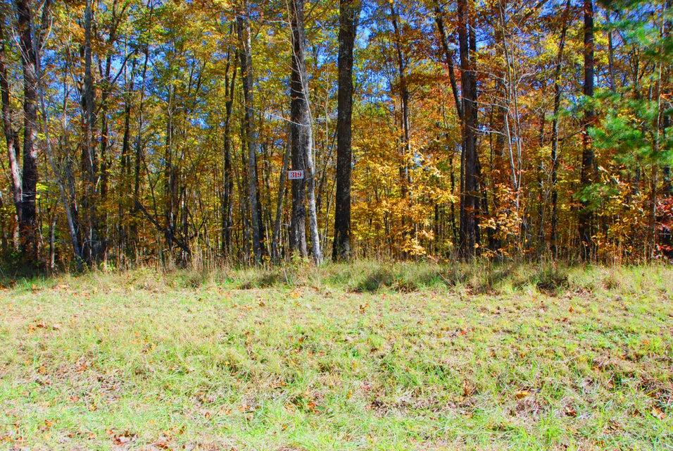 Terreno por un Venta en Wildcat Rd. & Cougar Lane Wildcat Rd. & Cougar Lane Jamestown, Tennessee 38556 Estados Unidos