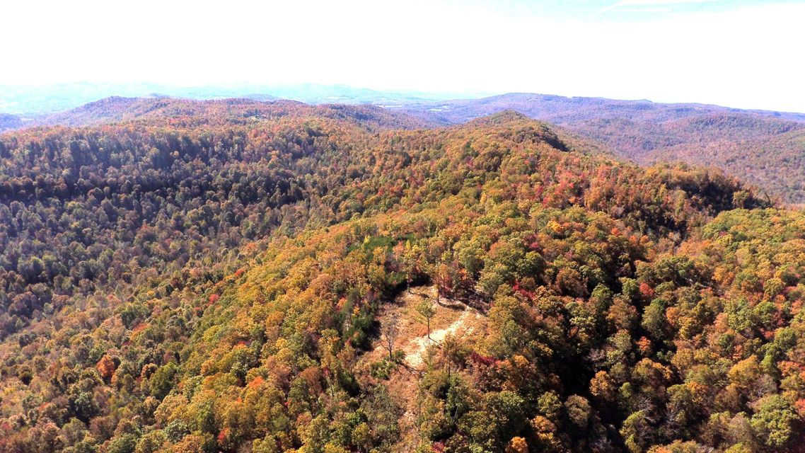Land for Sale at 4363 Buzzard Roost Road 4363 Buzzard Roost Road Jamestown, Tennessee 38556 United States