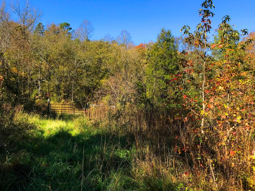 Additional photo for property listing at 213 Branham Hollow Road 213 Branham Hollow Road Ten Mile, Tennessee 37880 Estados Unidos