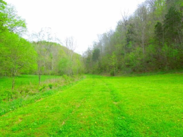 Land for Sale at 1370 Modock Hollow Road 1370 Modock Hollow Road Celina, Tennessee 38551 United States