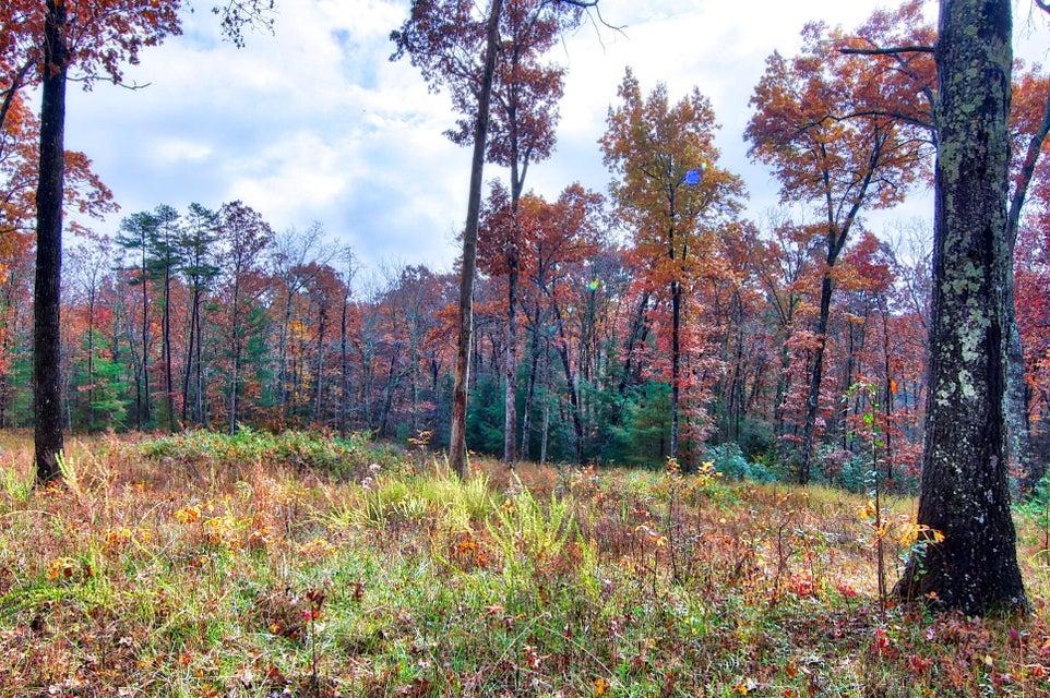 Земля для того Продажа на Bearpen Road Bearpen Road Jamestown, Теннесси 38556 Соединенные Штаты