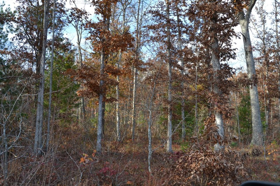 Additional photo for property listing at Dale Clingham Road Dale Clingham Road Crossville, 田纳西州 38572 美国