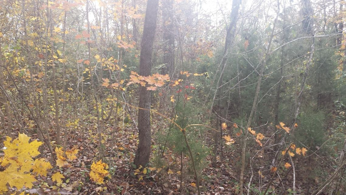 Additional photo for property listing at Lake Brook Lane Lake Brook Lane Lafollette, Теннесси 37766 Соединенные Штаты