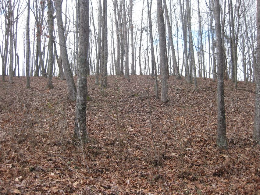 Additional photo for property listing at Forest Heights Forest Heights Lenoir City, Tennessee 37772 United States