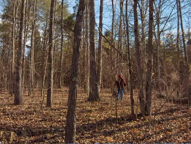 Additional photo for property listing at Lot 36 Creswell Road Lot 36 Creswell Road Seymour, Tennessee 37865 États-Unis