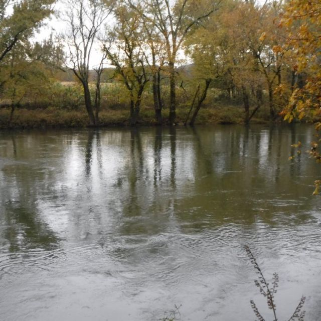 土地,用地 为 销售 在 10.09 Ben Gentry Lane 10.09 Ben Gentry Lane Elmwood, 田纳西州 38560 美国