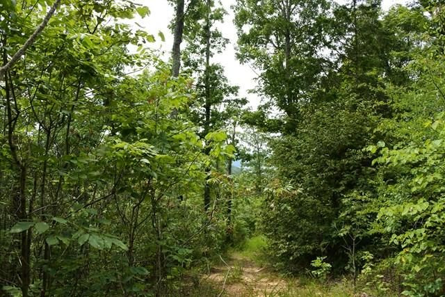 Land for Sale at Dale Hollow Lake Dale Hollow Lake Allons, Tennessee 38541 United States
