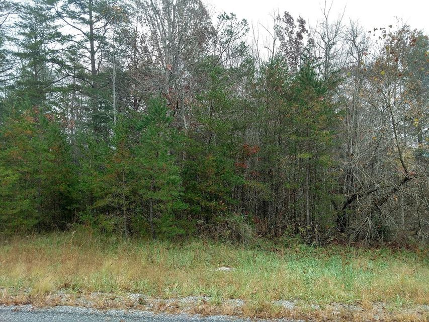 Land for Sale at Goodstock Road Goodstock Road Crossville, Tennessee 38555 United States