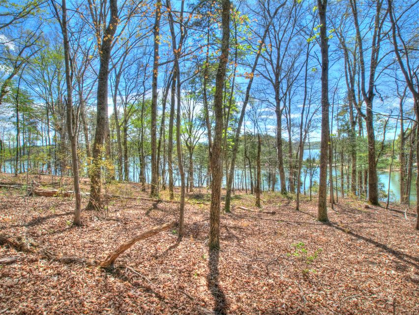 Additional photo for property listing at Lot 46 E Shore Drive Lot 46 E Shore Drive Rockwood, Tennessee 37854 Estados Unidos