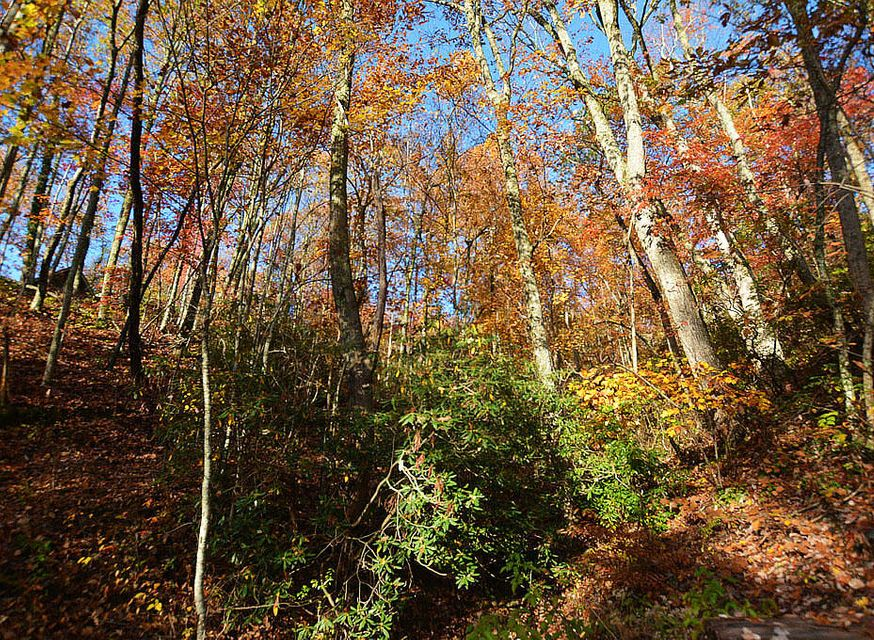 Land for Sale at Lot 11 Lower Alpine Way Lot 11 Lower Alpine Way Gatlinburg, Tennessee 37738 United States