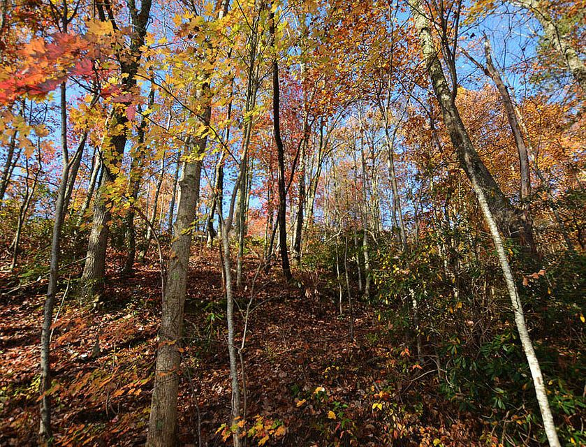 Additional photo for property listing at Lot 11 Lower Alpine Way Lot 11 Lower Alpine Way Gatlinburg, Tennessee 37738 États-Unis