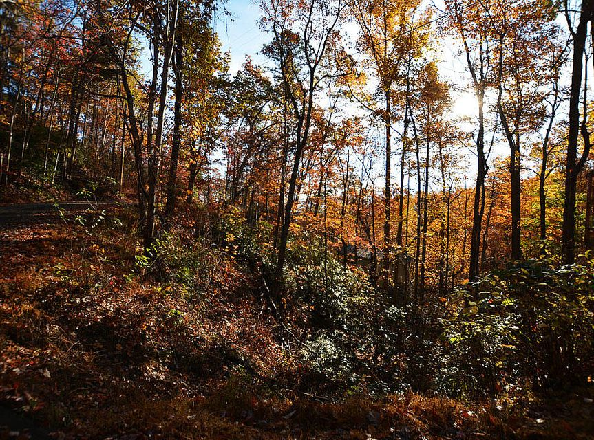 Additional photo for property listing at Lot 11 Lower Alpine Way Lot 11 Lower Alpine Way Gatlinburg, Tennessee 37738 United States