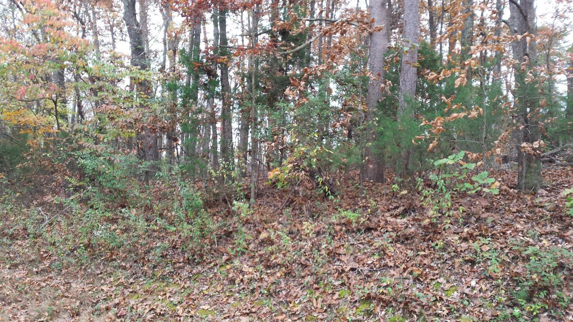 Land for Sale at 104 Lot 18 Block 3 Chanuisi Way 104 Lot 18 Block 3 Chanuisi Way Loudon, Tennessee 37774 United States