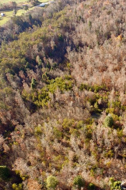 Land for Sale at 12.42ac Lovejoy Lane 12.42ac Lovejoy Lane Monterey, Tennessee 38574 United States