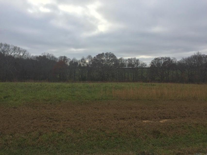 Terrain pour l Vente à Copper Pointe Copper Pointe Crossville, Tennessee 38555 États-Unis