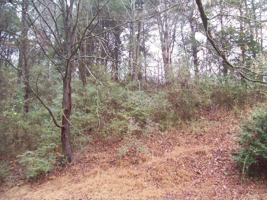 Additional photo for property listing at Westel Road Westel Road Rockwood, Tennessee 37854 Estados Unidos