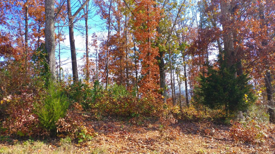 Additional photo for property listing at Ponderosa Drive Ponderosa Drive Madisonville, Tennessee 37354 États-Unis