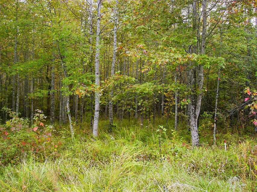 Land for Sale at 390 Saint George Drive 390 Saint George Drive Fairfield Glade, Tennessee 38558 United States