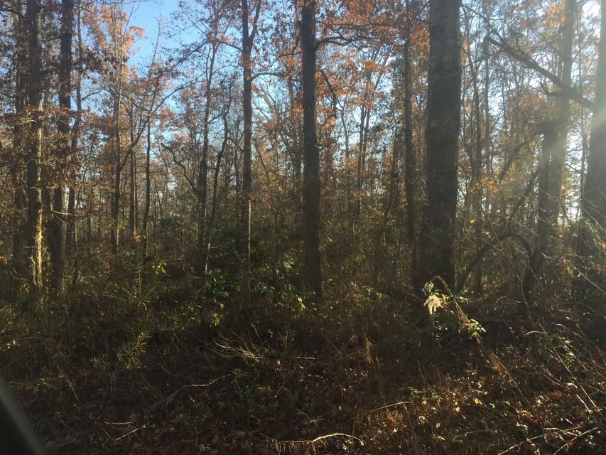 Additional photo for property listing at L Henry Road L Henry Road Crossville, Tennessee 38571 Estados Unidos